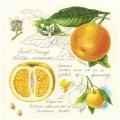 "Салфетка для декупажа SDL993000 ""Апельсин"", 33х33 см, Германия"