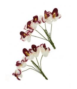 Цветы бумажные для скрапбукинга Орхидеи белые с бордовым, 10 шт., ScrapBerry's