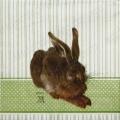 "Салфетка для декупажа IHR-201104 ""Кролик"", 33х33 см, Германия"