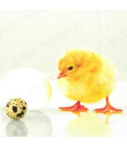 "Салфетка для декупажа IHR-201126 ""Цыпленок"", 33х33 см, Германия"