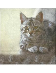 "Салфетка для декупажа IHR-201336 ""Кошка"", 33х33 см, Германия"