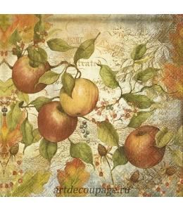 """Салфетка для декупажа IHR-201350 """"Спелые яблоки"""", 33х33 см, Германия"""