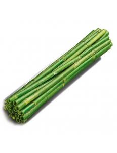 Стебли пушницы зеленые для флористики и декора, 40 см, 5 шт., Knorr prandell (Германия)