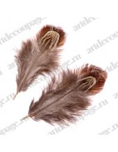Перья фазана Коричнево-бежевые, натуральное перо, 3-9 см, 1,5 г в упаковке, Knorr prandell (Германия)