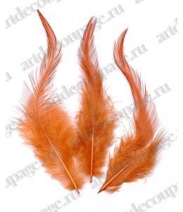 Перья петушиные оранжевые, натуральное перо, 10 см, 16 шт., Knorr prandell (Германия)