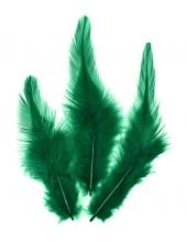 Перья петушиные зеленые, натуральное перо, 10 см, 16 шт., Knorr prandell (Германия)