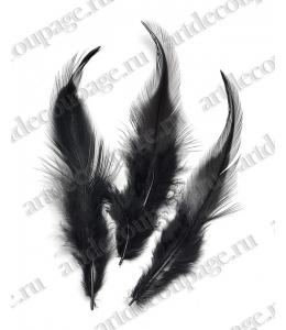 Перья петушиные черные, натуральное перо, 10 см, 16 шт., Knorr prandell (Германия)