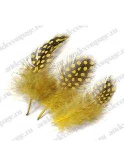 Перья цесарки для декора лимонно-желтые, 5 см, 20 шт., Knorr Prandell