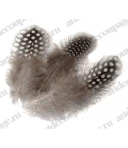 Перья цесарки черно-белые, натуральное перо, 5 см, 20 шт., Knorr Prandell (Германия)