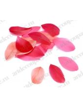 """Перья декоративные цветные """"Оттенки красного"""", натуральное перо, 5-8 см, 48 шт. в пакете, Knorr prandell (Германия)"""