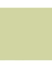 """Краска акриловая """"Allegro"""" KAL105, цвет светлый желто-зеленый, Stamperia (Италия), 59мл"""