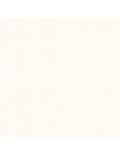 """Краска акриловая """"Allegro"""" KAL110, цвет молочно-белый, Stamperia (Италия), 59мл"""