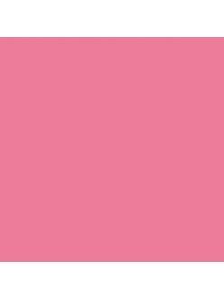 Краска акриловая Allegro KAL127 кувшинка розовая Stamperia, 59 мл