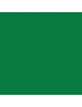 """Краска акриловая """"Allegro"""" KAL134, цвет натуральный зеленый, 59 мл, Stamperia (Италия)"""