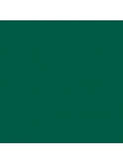 Краска акриловая Allegro KAL29 темно зеленый Stamperia, 59мл