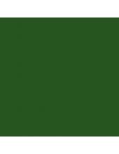 """Краска акриловая """"Allegro"""" KAL30, цвет природный зелёный, Stamperia (Италия), 59мл"""