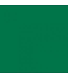 """Краска акриловая """"Allegro"""" KAL31, цвет ярко-зелёный, Stamperia (Италия), 59мл"""