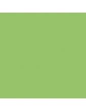 """Краска акриловая """"Allegro"""" KAL32, цвет светло-зелёный, Stamperia (Италия), 59мл"""