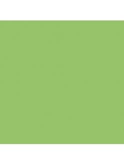 Краска акриловая Allegro KAL32 светло-зелёный Stamperia, 59мл