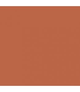 """Краска акриловая """"Allegro"""" KAL43, цвет печенье, Stamperia (Италия), 59мл"""