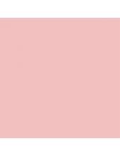 """Краска акриловая """"Allegro"""" KAL44, цвет пудра, Stamperia, 59мл"""