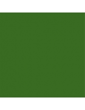 "Краска акриловая ""Allegro"" KAL46, цвет зеленый лист, Stamperia, 59мл"