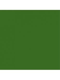 Краска акриловая Allegro KAL46 зеленый лист Stamperia, 59мл