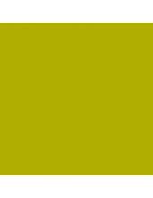 """Краска акриловая """"Allegro"""" KAL68, цвет зелёные водоросли, Stamperia (Италия), 59мл"""