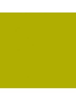 Краска акриловая Allegro KAL68 зелёные водоросли Stamperia, 59мл