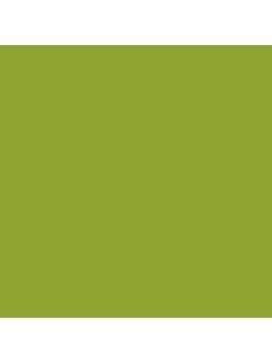 Краска акриловая Allegro KAL69 зеленое поле Stamperia, 59мл