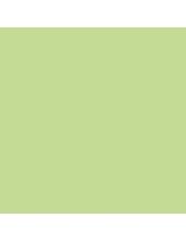 """Краска акриловая """"Allegro"""" KAL71, цвет нежно салатовый, Stamperia (Италия), 59мл"""