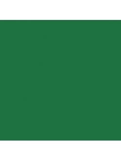 Краска акриловая Allegro KAL76 сосновый зелёный Stamperia, 59мл