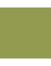 """Краска акриловая """"Allegro"""" KAL80, цвет насыщенный желто-зеленый, Stamperia (Италия), 59мл"""