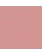 """Краска акриловая """"Allegro"""" KAL81, цвет розовая пудра, Stamperia (Италия), 59мл"""