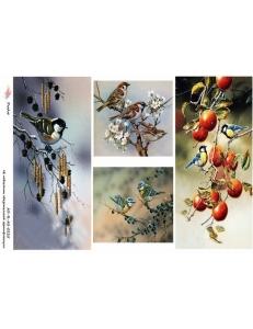 "Рисовая бумага R-A3-0235  ""Птички на ветке"", формат А3, ProArt (Россия)"