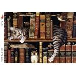 """Рисовая бумага R-A5-0521 """"Кошка в библиотеке"""", формат А5, ProArt (Россия)"""