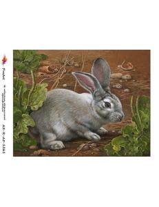 """Рисовая бумага R-A5-1261 """"Маленький кролик"""", формат А5, ProArt (Россия)"""