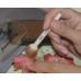 Спонж кисть из поролона, диаметр 2,5 см, 3 шт, Stamperia