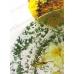 Губка спонж для создания рисунка, поролон, KRS01, Stamperia