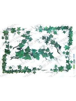 Рисовая бумага для декупажа Renkalik Плющ,35х50 см