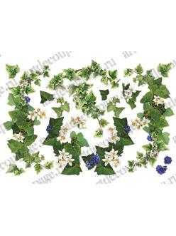 Рисовая бумага для декупажа Плющ с цветками и яодами, 35х50 см, Renkalik
