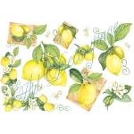 """Рисовая бумага для декупажа Stamperia DFS059 """"Лимоны"""", 33x48 см"""