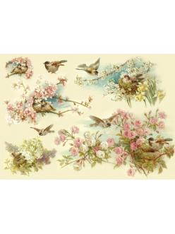 Рисовая бумага для декупажа Птицы и цветущие деревья Stamperia DFS145, 33x48 см