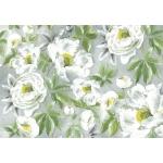 """Рисовая бумага для декупажа Stamperia DFS160 """"Белые розы, модерн"""", 33x48 см"""