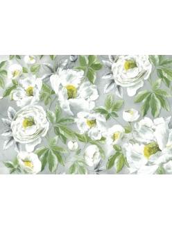 Рисовая бумага для декупажа Белые розы, модерн, 33x48 см, Stamperia DFS160