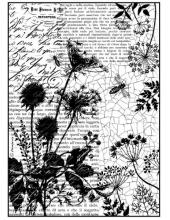 """Рисовая бумага для декупажа Stamperia DFSA4185 """"Полевые травы и текст"""", формат А4"""
