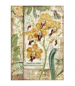 "Рисовая бумага для декупажа Stamperia DFSA4532 ""Амазония - орхидея"", формат А4"
