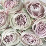 """Салфетка для декупажа SVD2067 """"Английские розы"""", 33х33 см, Sagen Vintage Design, Норвегия"""