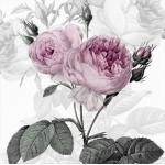 """Салфетка для декупажа SVD80077 """"Лиловые розы"""", 33х33 см, Sagen Vintage Design, Норвегия"""