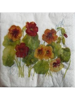 Салфетка для декупажа S0084 Цветы настурция, 25х25 см